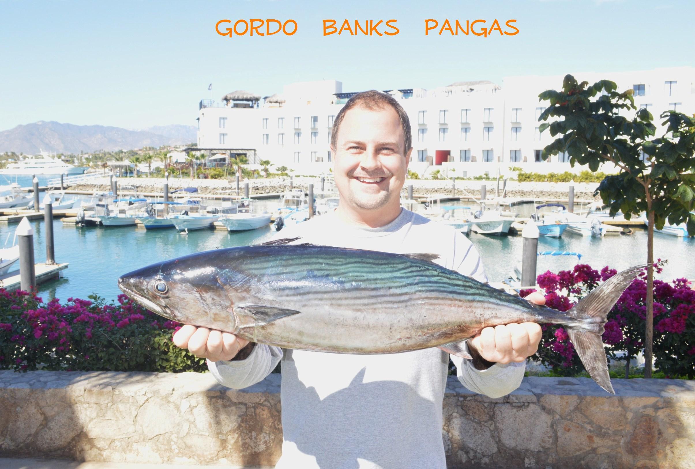 822 greg bonita for Cabo fishing seasons