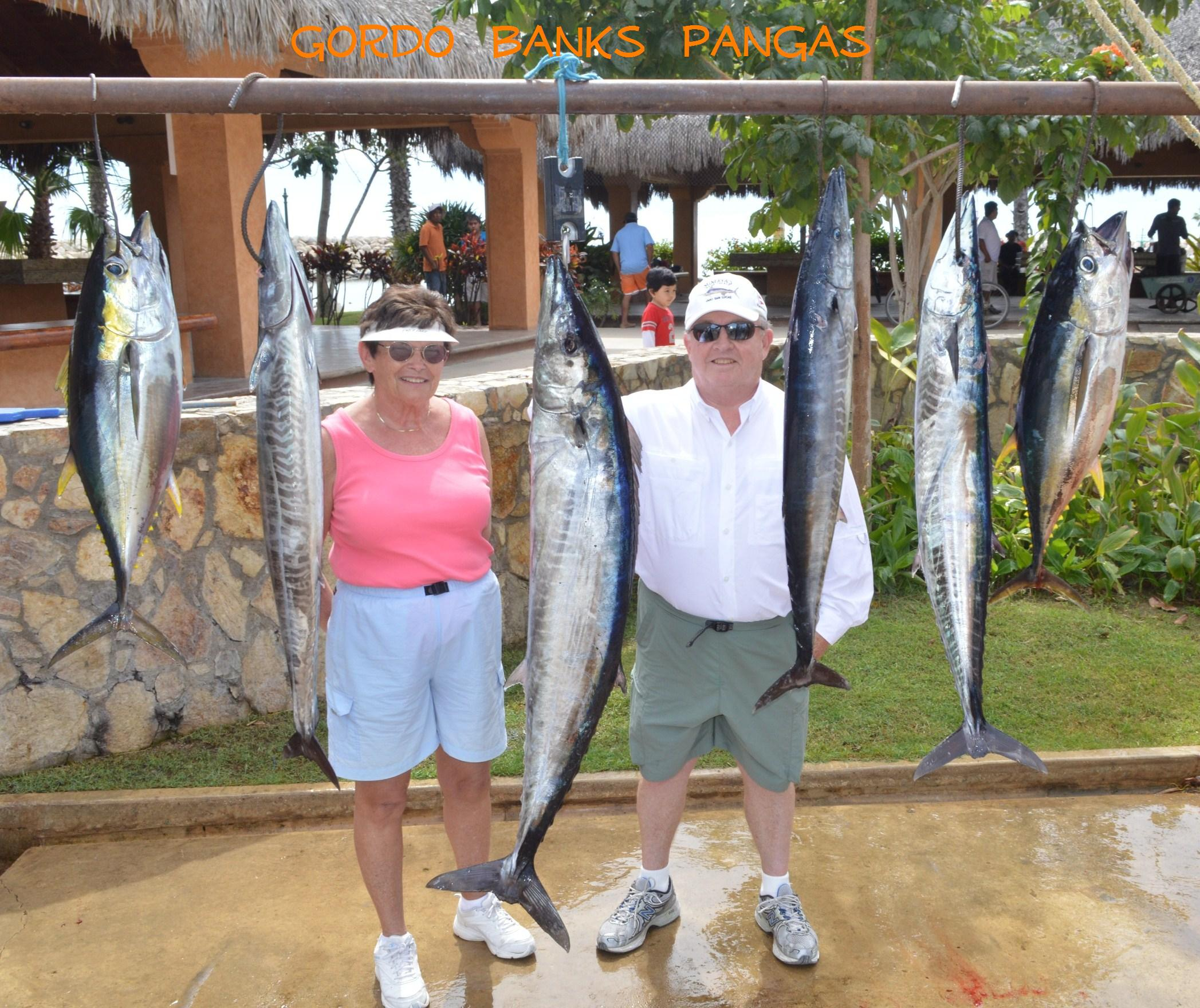 218 graycatch for Los cabos fishing