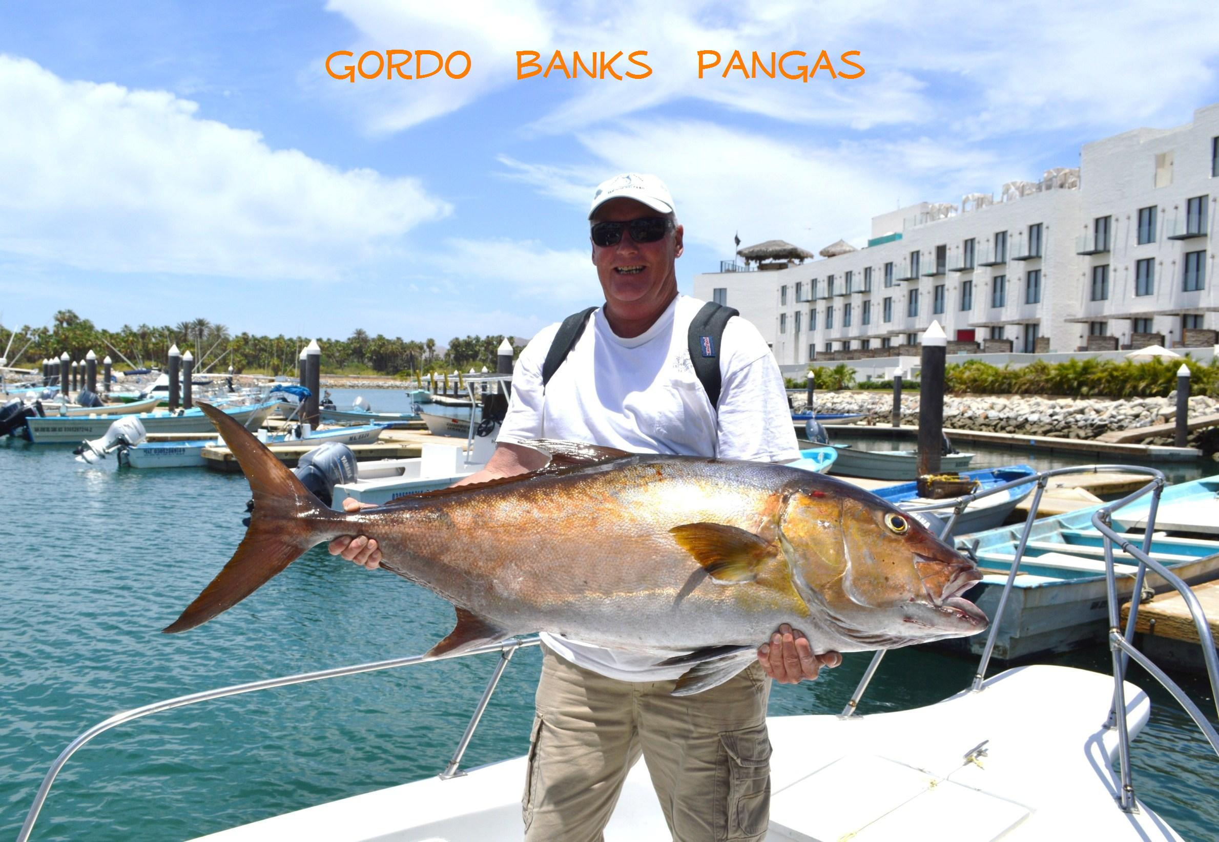 Cabo san lucas blog los cabos mexico los cabos for Cabo san lucas fishing report